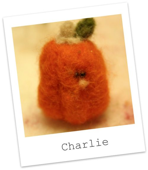 For the love of pete punkin charlie