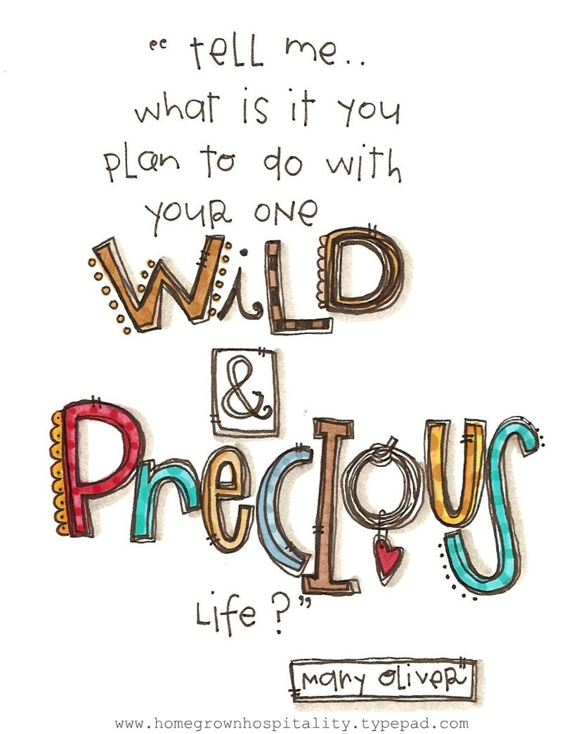 Wildandpreciouscolor