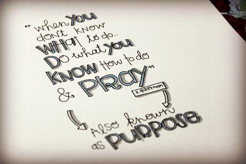 Purpose2013