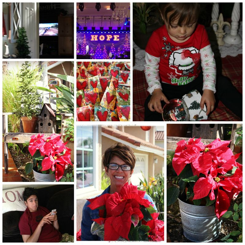 December1 Collage